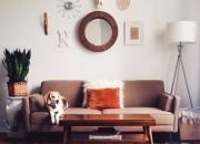 Leather sofas vs. fabric sofas